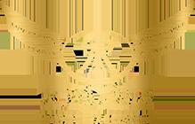 Radin Exchange Logo